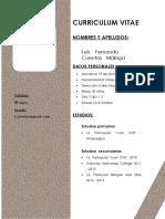 Curriculum Vitae Luis Fernando