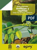 Guia Ilustrada Canon Del Rio Porce Antioquia Anfibios y Reptiles(3)