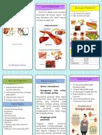 Leaflet Kolesterol Ok Docx
