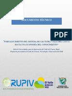 INFORME CALI GESTION DEL CONOCIMIENTO.pdf