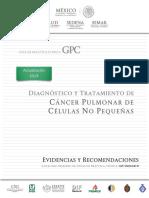 Diagnóstico y Tratamiento de Cancer Pulmonar de Celulas No Pequeñas EYR 2019