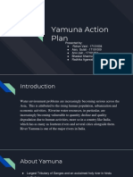 Yamuna Action Plan