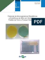 Potencial de Microrganismos Rizosféricos.pdf