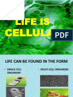 Life is Cellula