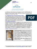 40A4-PINTAR AS BARRAS - Le CEFRACOR.docx.pdf