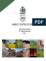 52f_CONTROL_DE_CARCAVASJCCD.pdf