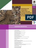 Protocolo de atención a conflictos con felinos silvestres por depredación de ganado.