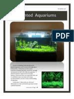 Planted Aquariums