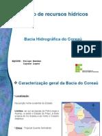 Trab Recursos Hidricos PDF