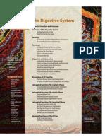 human_physiology_-_kapitola_21.pdf