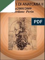Anatomia i i