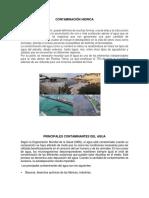 CONTAMINACIÔN HIDRICA.docx