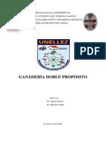 Informe de Doble Proposito