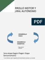 Desarrollo Motor y Postural Autónomo- Pikler