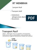 tansport membran.pdf