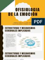 Psicofisiologia de La Emoción