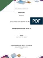 Seminario de Investigacion_ Camilo Covilla