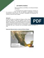 API Puerto Chiapas