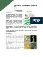 10 PLANTA MEDICINALES.docx
