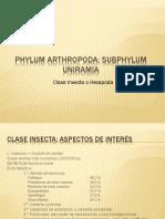 Insectos 1-Morfologia Externa