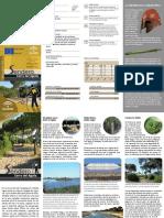 170_Cerrodelaguila.pdf