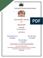 CGR report.docx