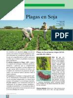 Voces y Ecos 22 Art 3.Pdfinsectos Plagas en Soja