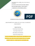 G5  InformeParcial-BIOCOSMETICOS