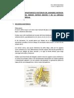 Ciatico Mayor y Caps Post Rodilla Marta Ultradissection