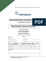 HLC Proyecto PUCAMARCA_Plan de Seguridad