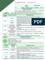 Plan Diagnostico (2)