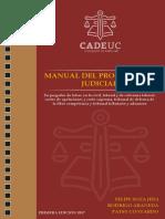 Manual procurador correccion final.pdf