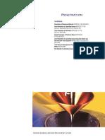 02-Penetration.pdf