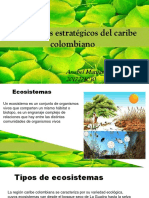ecosistemas estratégicos en Colombia