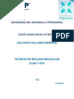 Tecnicas Elisa y Pcr