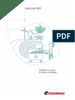 REPORTE_2017.pdf