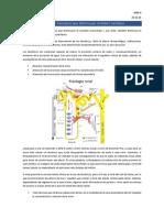 23.10 - Farmacología Renal -Converted