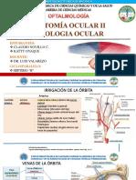 EXPO - Anatomia Ocular II y Fisiologia Ocular 2