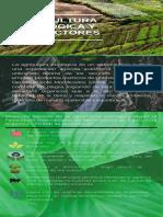 Evidencia.la Agricultura Ecológica y Sus Factores