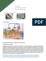 Ciclo Biogeoquimico Del Hierro y El Azufre