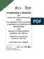 aislamiento de pyricularia.pdf