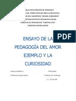 Ensayo 1 Pedagogia Del Amor Alvis Rodriguez