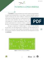 Quimibol  - revisando a Química Orgânica.pdf