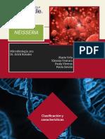 Neiseria Microbiología