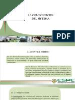 2.3 COMPONENTES DEL SISTEMA.pptx