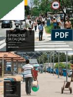 8-Principios-Calcada_2019.pdf