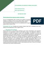 AA4 ESTUDIO DE CASO.docx