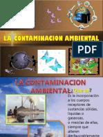 contaminacion.pptx
