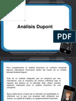 Analisis Dupont.pdf