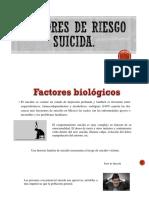 Clase Seminario Factores de Riesgo Suicida.